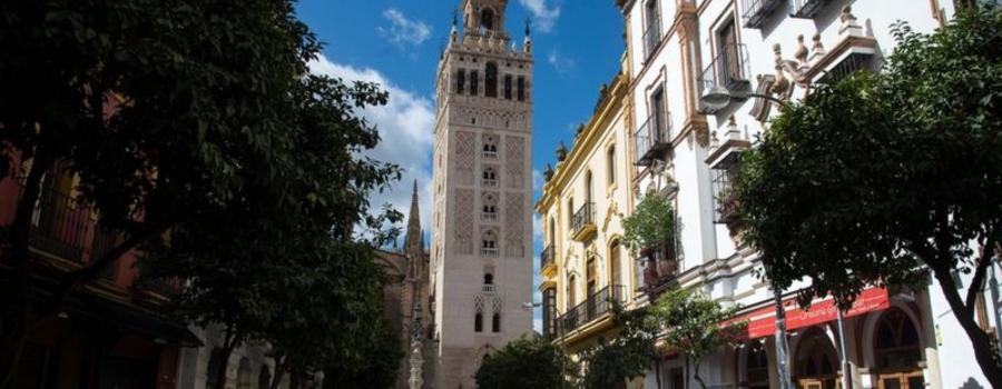 В іспанському барі випадково виявили баню XII століття